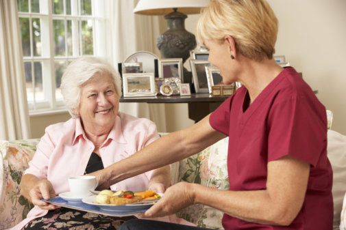 Simple Ways to Improve Your Senior Companions' Well-Being
